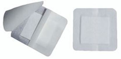 "Picture of Bordered Island Gauze Dressing, 4"" x 4"", 2"" x 2"" Pad"