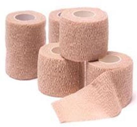 """Picture of Cohesive Bandage, Assted Colors,3""""x5 yds,(6-Blue,6-Purple,6-Red,3-Green,3-Pink)"""