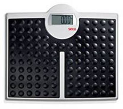 Picture of High Capacity Digital Flat Scale, Weight Capacity 440lbs