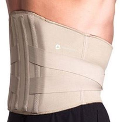 Picture of Thermoskin® T9-Lite Rigid Lumbar Support, 2XL, Beige
