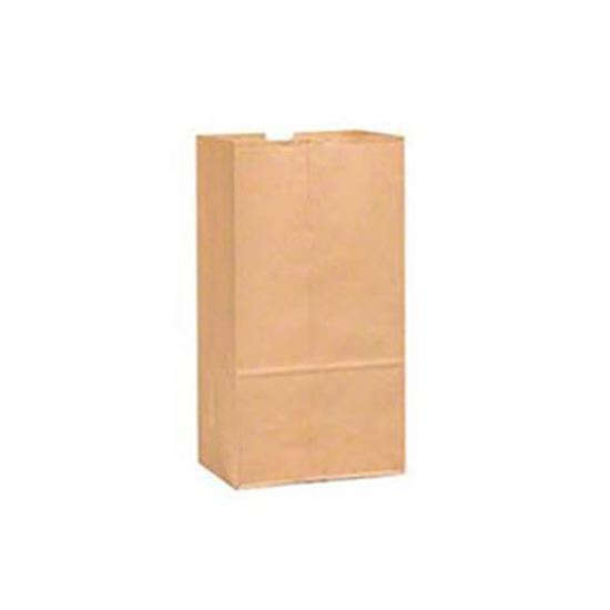 Picture of Brown Paper Grocery Bag, #6, 500 Count